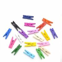 25mm - MIXED COLOUR - 25mm Small Plain Wooden Craft Pegs Mini Clip Metal Springs