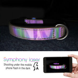 Safety Fluorescent Pet Dog Collars with Soft Neoprene Padded Reflective S M L XL