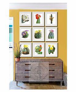 Cactus plant Succulents Decor set of 9 unframed southwest decor