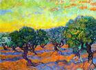 "Vincent Van Gogh *FRAMED* CANVAS ART Olive Grove Orange Sky 16""X 12"""