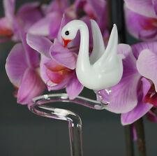Orchideenstab aus Glas-Orchideenhalter  Lang 50 cm  hochwertiges Duranglas !