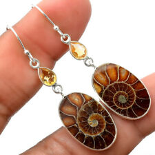 Sterling Silver Earrings Jewelry Sde29882 New listing Fossil Ammonite and Citrine 925