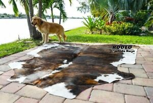 Amazing Rodeo Brazilian  Brindle cowhide size approx 5X6- 6x6 feet