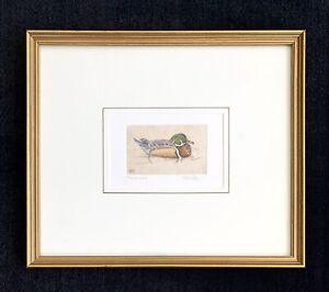 "Melanie Fain signed etching ""Wood Duck"" ~ Texas artist"