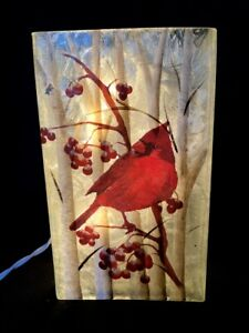 """Stony Creek - Frosted Glass - 7"""" Square Lighted - Cardinal with Berries Winter"""