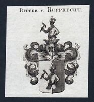 ca. 1820 Ruprecht Rupprecht Wappen Adel coat of arms Kupferstich antique print