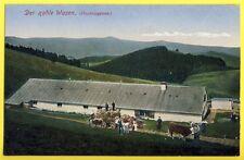 CPA Alsace France 68 - DER KAHLE WASEN (Hochvogesen) PETIT BALLON Ht Rhin Ferme