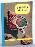 MUSCHELN AM MEER - J. Arrecgros