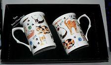 Cats mug gift set 2x bone china mugs with cats & kittens print in black gift box
