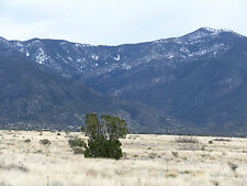 SIDE BY SIDE WHOLESALE HOMESITE LOTS - CLOSE TO THE MOUNTAINS - $62/MO FINANCE!!