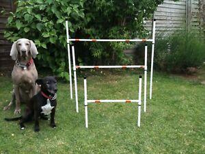Dog Agility Small Basic 50cm Jump by Jessejump Agility