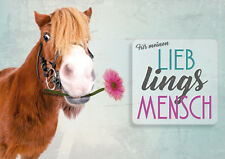 """Doppelkarte + Kuvert Glückwunschkarte Pony Pferd """"Für meinen Lieblingsmensch"""""""