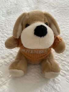 FAO Schwarz Collector 🐶 Puppy Mini Plush November Sweater Stuffed Animal Toy