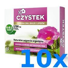 CISTUS INCANUS   600 Tabletten (vegan) a 1750 mg für 12 Monate Premium