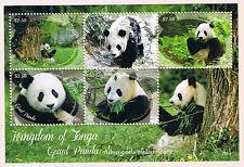 Tonga 2013 - Giant Panda Postage Stamp Souvenir Sheet