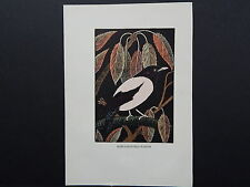 BIRDS, ERIC FITCH DAGLISH, Engraving, c. 1948 Rose-Coloured Pastor #06