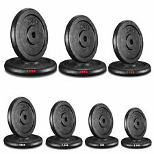 """Cast Iron Weight Plates Free Weights 1"""" Disc Dumbbell Barbell Bar Weight Fitness"""