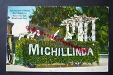 Tournament of Roses Pasadena, California, MICHILLINDA FLOAT postcard, 1914