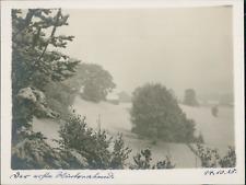 Allemagne, Vue des arbres et champs sous la neige, 14 octobre 1928, vintage silv