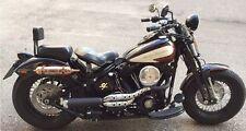 Schienalino Sissybar Sgancio Rapido Nero Harley Davidson SOFTAIL CROSS BONES