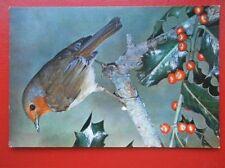 Bird Collectable Animal Postcards