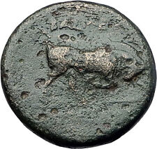 SELEUKOS I Nikator 312BC Genuine Ancient SELEUKID Greek Coin MEDUSA BULL i60960