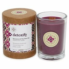 Root Candles Scented Seeking Balance Detoxify Candle Spearmint and Tea Tree Oil