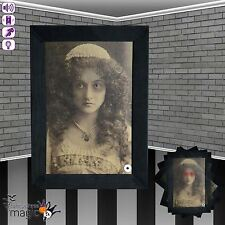 Animated Movement Sound Light Up Haunted Picture Frame Halloween Decoration Prop