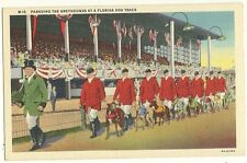 Parading the Greyhound dogs at dog track Florida FL Postcard