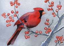 CARDINAL Art Print Watercolor Bird Painting Signed by Artist DJ Rogers