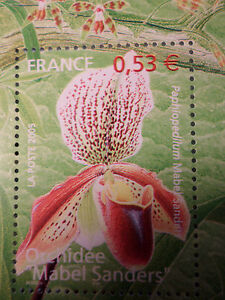 FRANCE 2005, timbre 3763, FLEURS, ORCHIDEE MABEL, FLOWER, neuf**, MNH STAMP