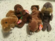 Lot of 4 Sea Otter, Walrus, Beaver Beanie Babies Vgc