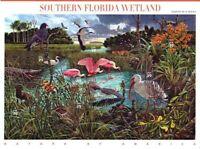 2006 FLORIDA WETLANDS Sc 4099 Nature of America #8