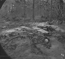 Unburied Soldiers Gaine's Mill - Cold Harbor, VA - 8x10 US Civil War Photo