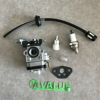 Carburetor & Fuel Line For VICTA TTS2226 AB Whipper Snipper Trimmer Carburettor