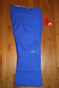 THE NORTH FACE Girls VIBRANT BLUE Insulated Snow PANTS Youth L LARGE 14 16