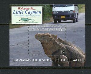 X457  Cayman Islands  2009  fauna  Iguana  sheet   MNH