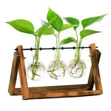Desktop Plant Terrarium Glass Planter Bulb Vase For Indoor Plant W/Wooden Stand