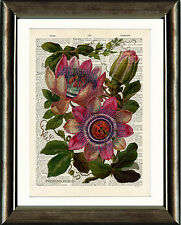 Antique Book page Art Print - Vintage Pink Passion Flower Dictionary Wall Art