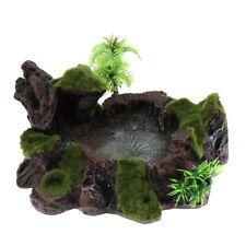 Décor de plantes pour le réservoir de reptiles Terrarium