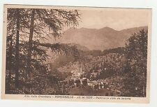CARTOLINA 1914 ALTA VALLE BREMBANA RONCOBELLO PANORAMA VISTODALEVANTE RIF. 134/C