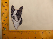 """EMBROIDERED Boston Terrier Head #12 Iron On / Sew On Patch approx 3""""(7.5cm)"""