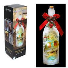 Premier 29cm Battery Light up Bottle With 15 White Led's - Robin