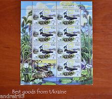 Belarus Stamp 2006 Bird of the year Lapwing block
