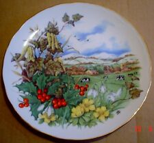 Royal Albert Collector Plate CRISP AND COLD THE EARTH SLEEPS SOUNDLY