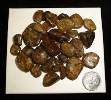 Bronzite Tumbled Chakra Stones 66 grams Crystal Healing Reiki Crystal
