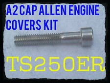 Suzuki TS250ER - A2 Crankcase Covers Kit - Cap Allen Screws
