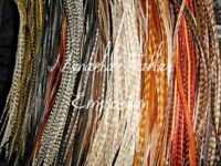 Hair Feather  Extensions LONG NATURAL WHOLESALE Grizzly Whiting Saddle 15pc