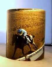 Unique Coffee Mug American Pharoah  Belmont Win Triple Crown Photo Print on cup