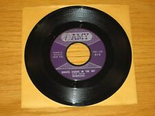 "INSTRUMENTAL 45 RPM - RAMRODS - AMY 813 - ""(GHOST) RIDERS IN THE SKY / ZIG ZAG"""